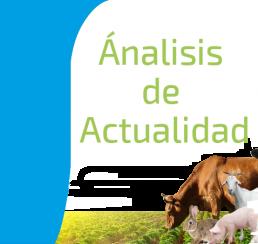 Análisis de Actualidad