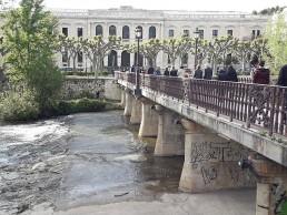 El TSJ anula un decreto que permitía explotaciones ganaderas sin licencia ambiental en Castilla y León