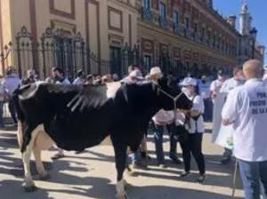 foro agro ganaadero, Ganaderos de leche exigen un precio mínimo del brik