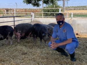 FORO AGRO GANADERO, Opinión de Antonio Palomo: IGNOMINIA